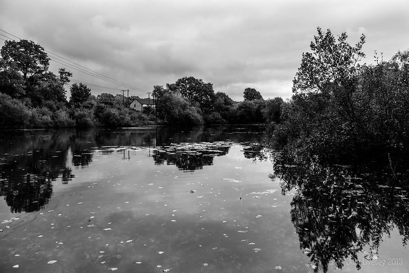 Creekmoor Ponds, looking east