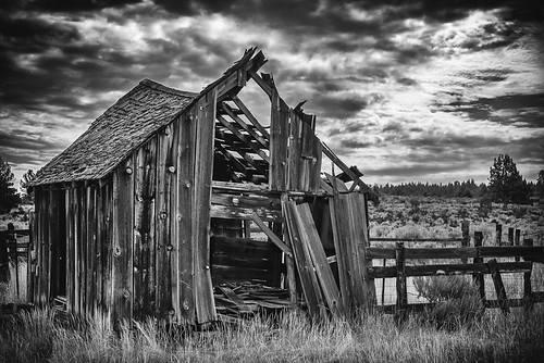 Half Shack by ronWLS