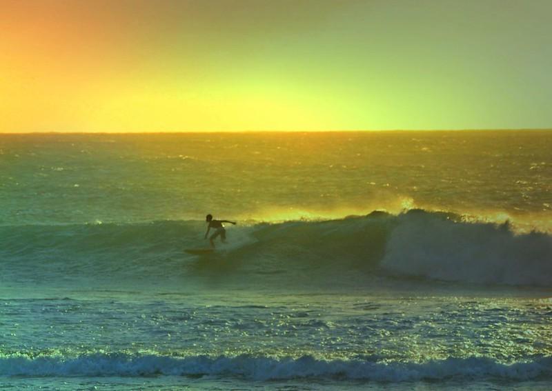 Surf Lights