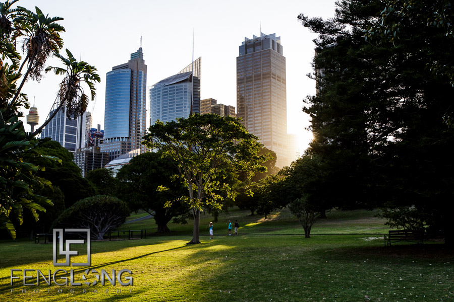 Royal Botanic Gardens in Downtown Sydney