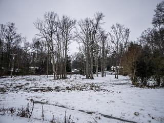 2014 Snow-002