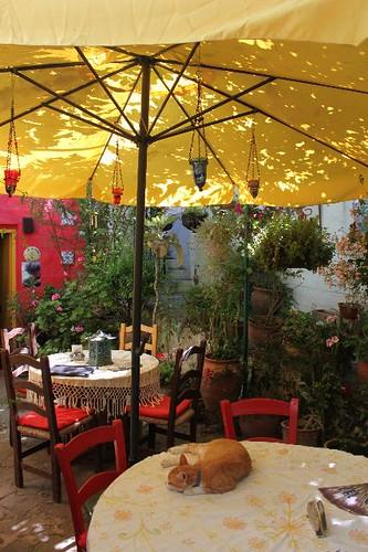 20130521_5542_Gardens-of-Irini-cafe_Vga