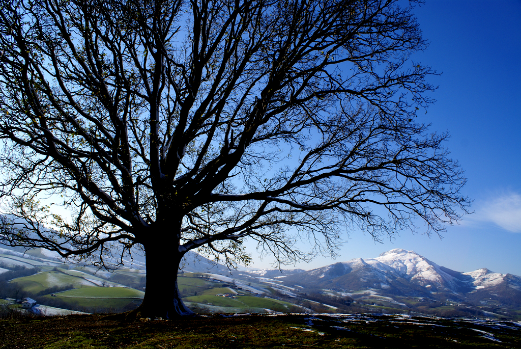 10. Valle del Baztán en invierno. Autor, Arnofoto.fr