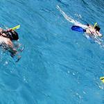 Snorkel Trio
