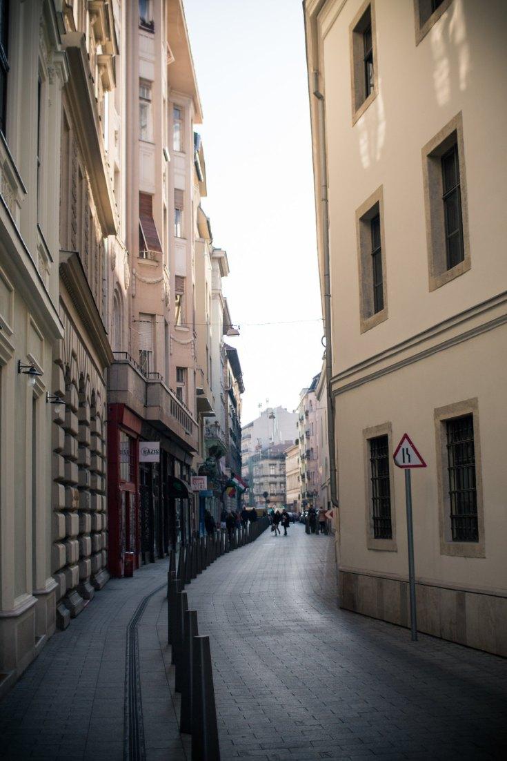 Budapest_January_2014_Prezi-17