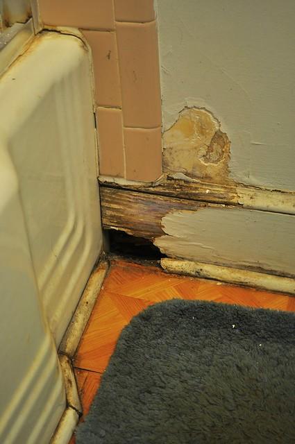 2012-01-29 Bathroom remodel before 09