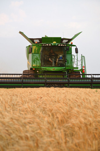 James in the combine