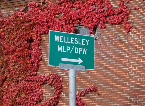 Wellesley MLP/DPW