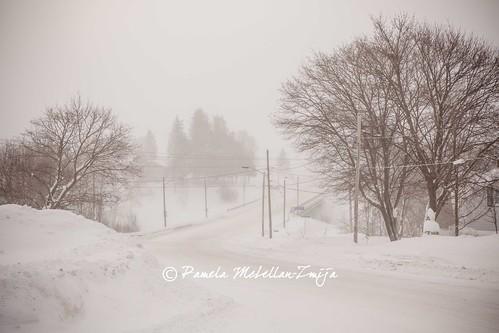 20140107-328C2926-WM by {Pamela Zmija Photography}