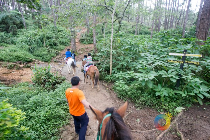 A Manor Christmas Horseback Riding - Our Awesome Planet-12.jpg