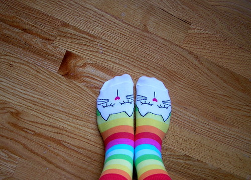 Rainbow Kitty Socks