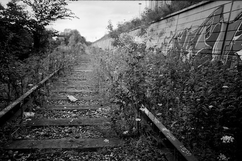 Old Railway in the Don Valley