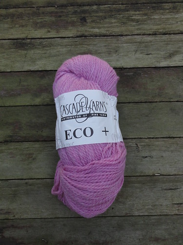 Cascade Yarns Eco+