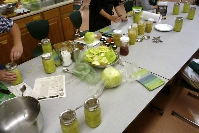 Putting Up: Fermenting Sauerkraut
