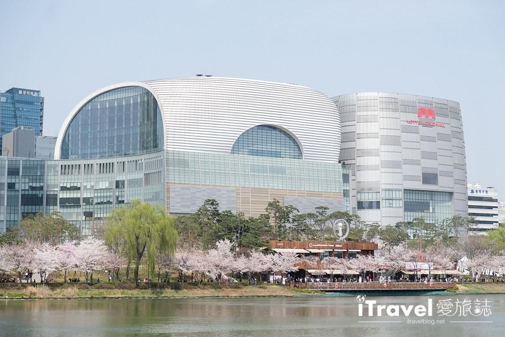 首尔赏樱景点 乐天塔石村湖 (33)