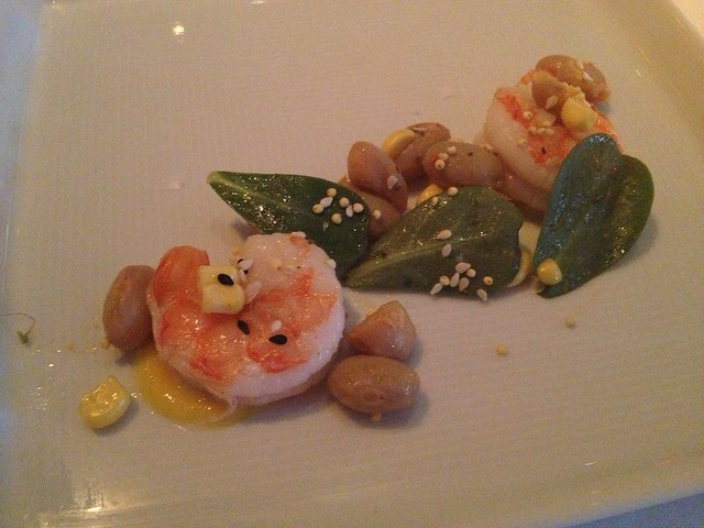 Blue shrimp - Jardiniere