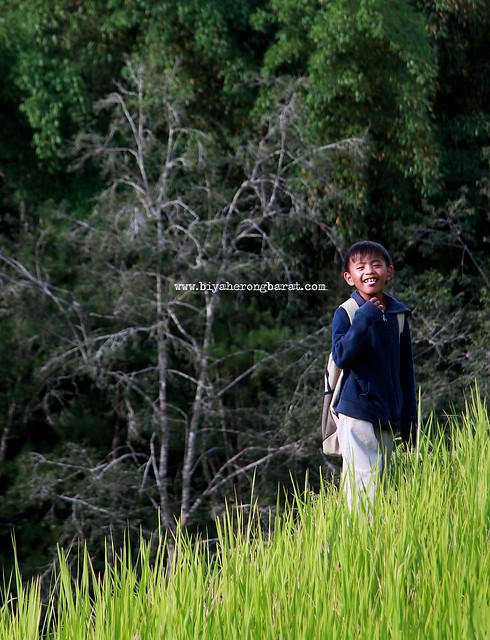 Kid in Rice Terraces