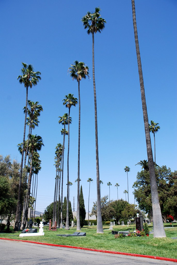 Around Hollywood Forever
