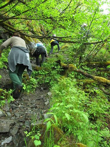 Steep hike to Mendenhall