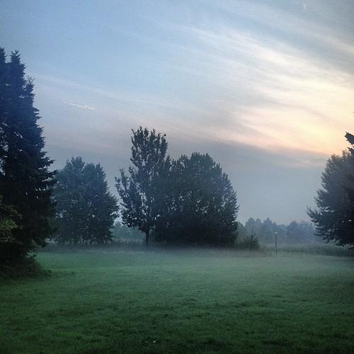 Goedemorgen! by Dynaries