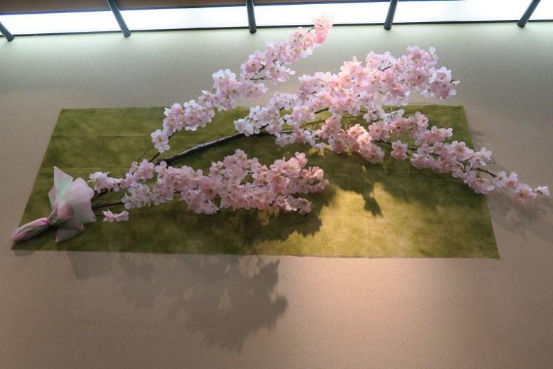 のきば 店內的巨大櫻花枝,節期氣氛滿點!!