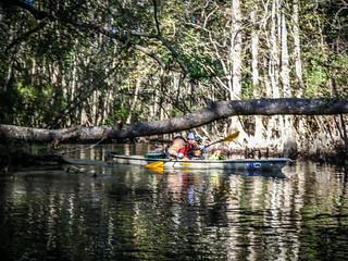 South Edisto River-029