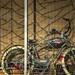 Bike Window Reflection