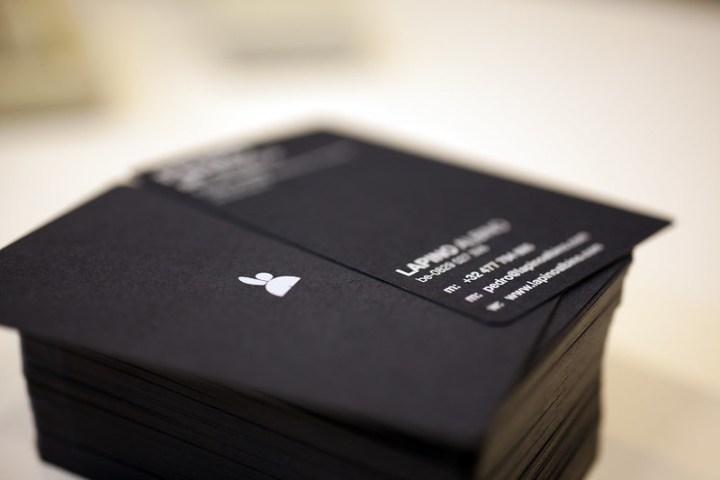 Lapino Albino Businnes Cards 2013