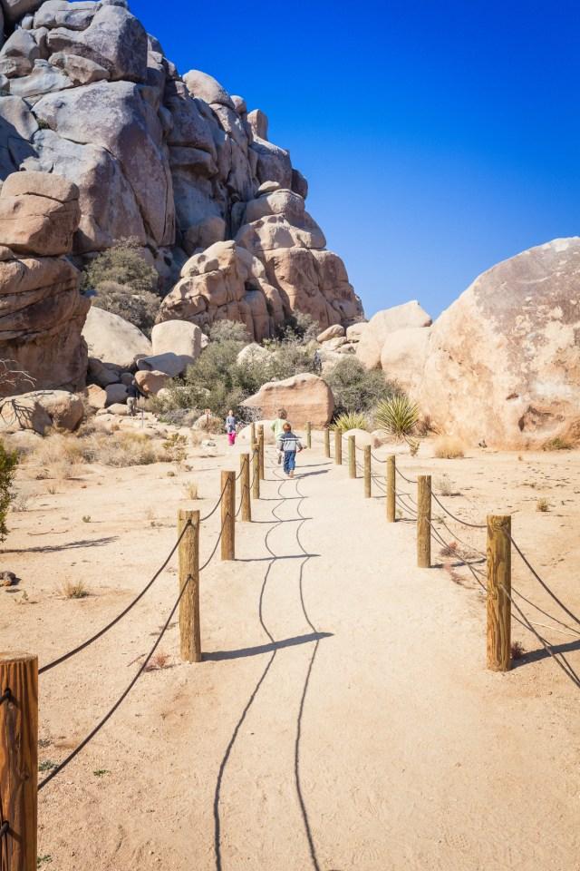 Hidden Valley Trail, Joshua Tree National Park