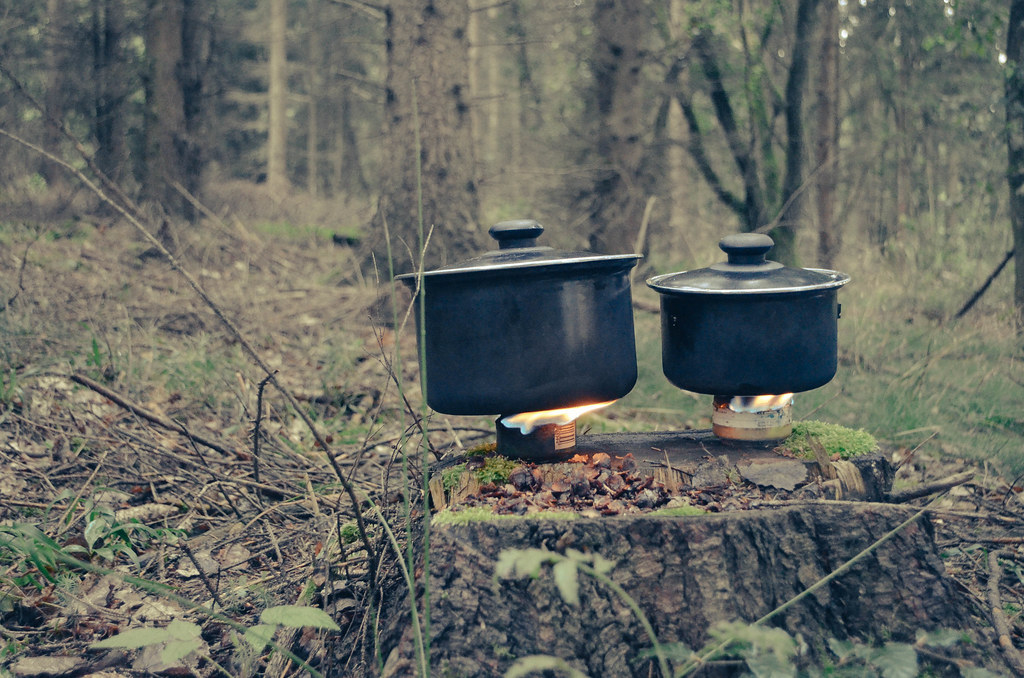 19 cooking on tree stumps