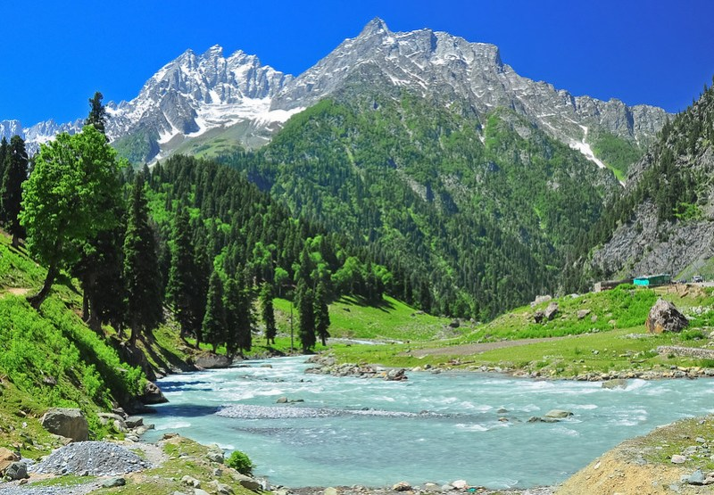 SINDH RIVER flowing through the Lush Green SONAMARG VALLEY