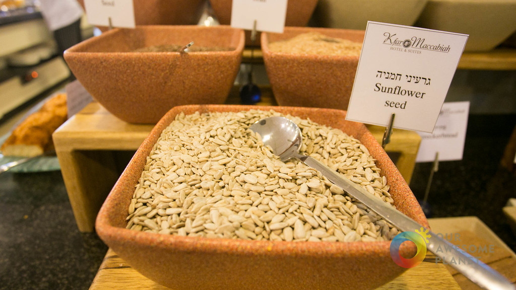 Day 1- Kosher Breakfast and Nazareth  Our Awesome Planet-46.jpg