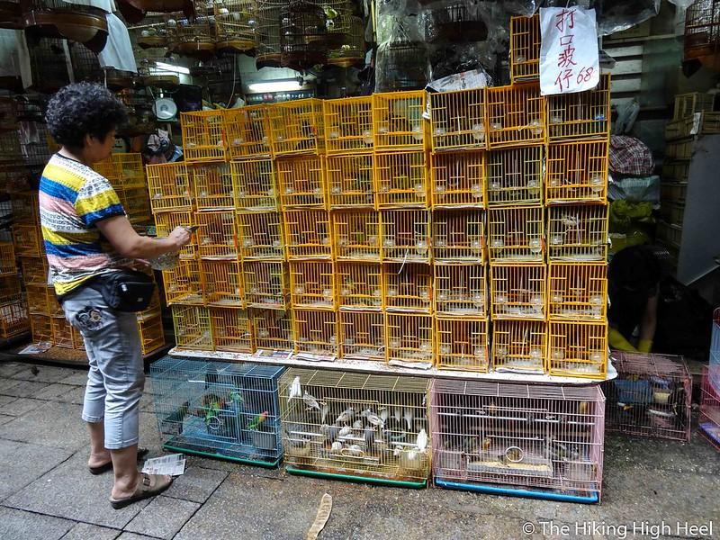 Vogelmarkt in Hongkong
