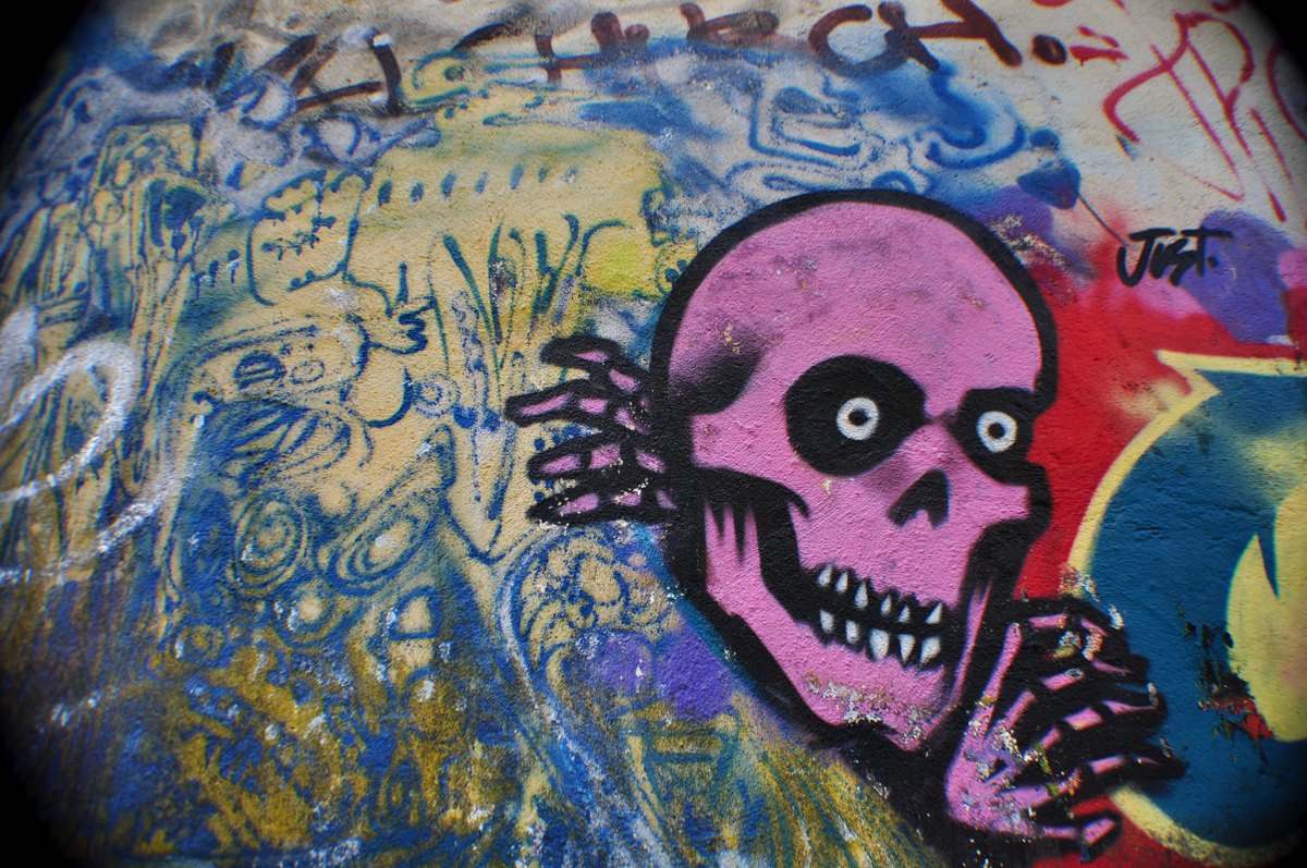 _Skull rose