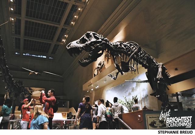 Smithsonian Dinosaur Exhibit Photos Brightest Young Things Stephanie Breijo38