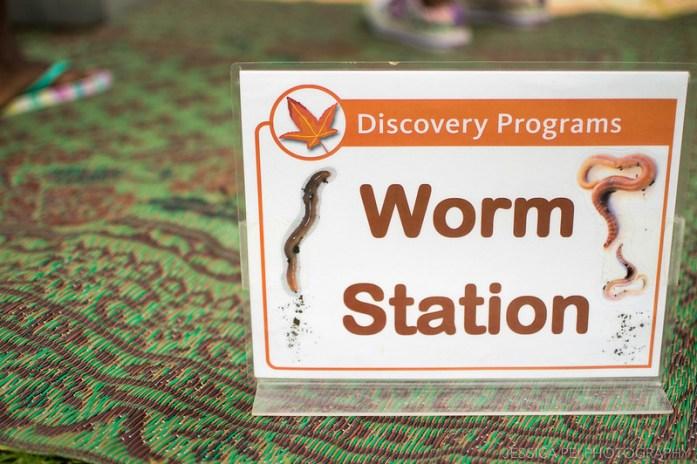 worm station