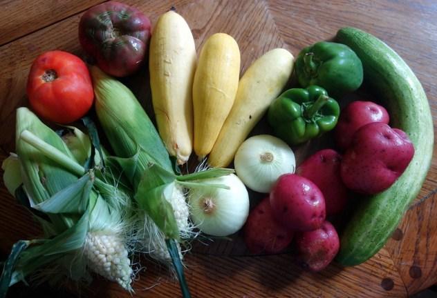 Homestead Creamery Vegetables Week 8