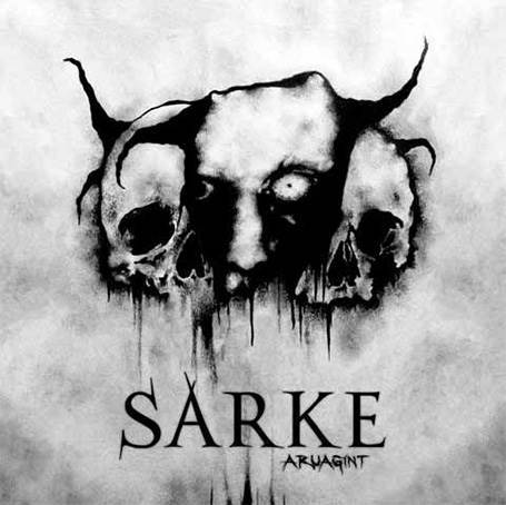 Cover of Aruagint by Sarke