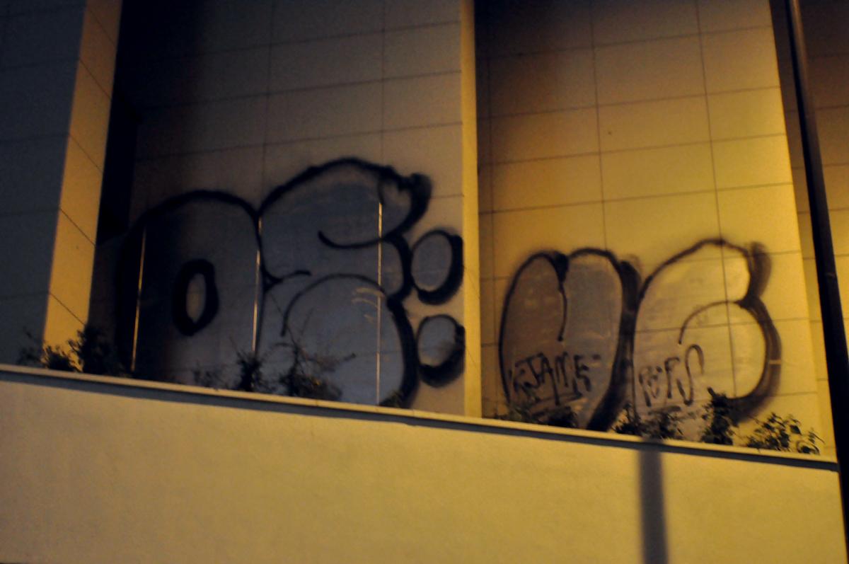 Oeuf (4)