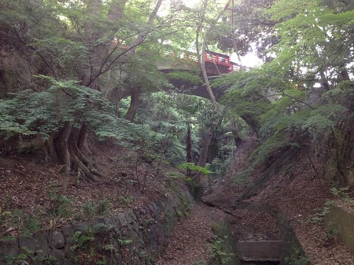 flickr: 朝の五月山公園