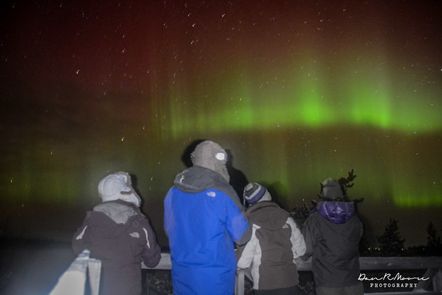 Northern Lights Chapter Summary