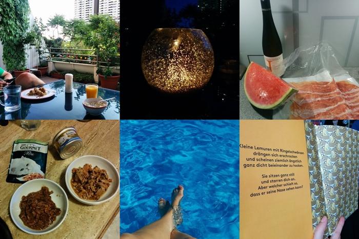 Terrasse | Windlicht | Wassermelone, Prociutto & Wein | Gourmet Katzenfutter | Pool | Kinderbuch