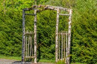 natural wood wedding arches