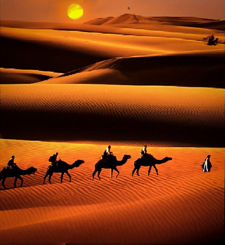 Sunset at Thar Desert.