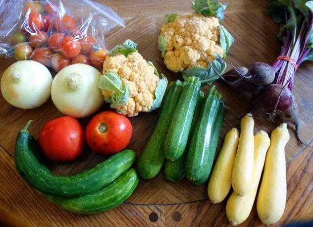 Homestead Creamery Week 5 Vegetables