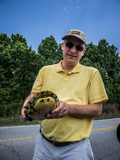 Dwight Rescues a Turtle