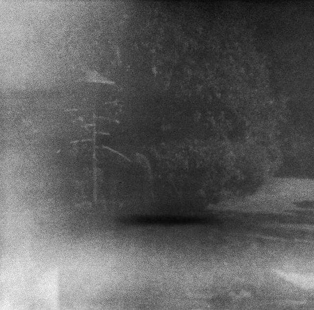 Found Film:  Kodacolor-X Trip to Florida
