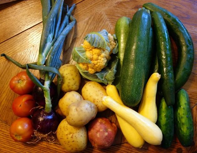 Homestead Creamery Vegetables Week 2