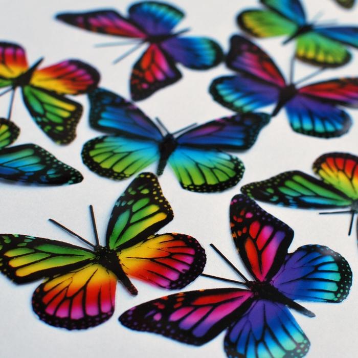 Regenbogen Monarch Schmetterlinge
