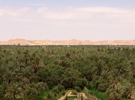 escursioni Marsa Matrouh